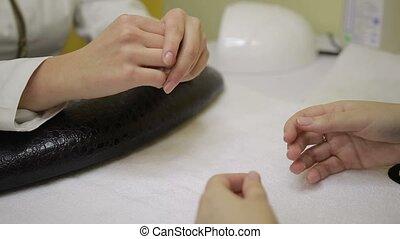 Professional manicurist examining female hands - Closeup of...