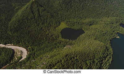 Top air view black deep lake is located among dense green...