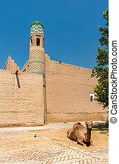 Camel at Mohammed Rahim Khan Medresa at Itchan Kala, the old...