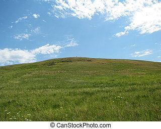Rolling green hills under a blue summer sky