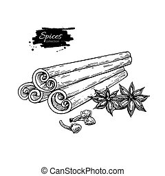 Cinnamon stick tied bunch, anise star and cloves. Vector...