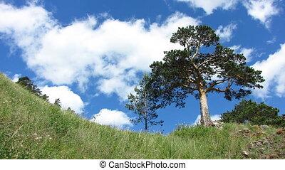 Nature - landscape 3