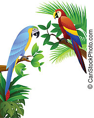 parrot bird - vector illustration of couple parrot