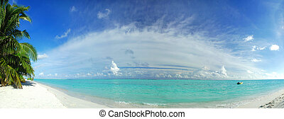 Tropical paradise - Beautiful tropical beach in the...