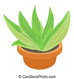 Agave icon, cartoon style - Agave icon. cartoon illustration...