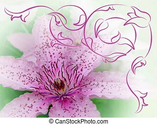 Clematis with ornamental design