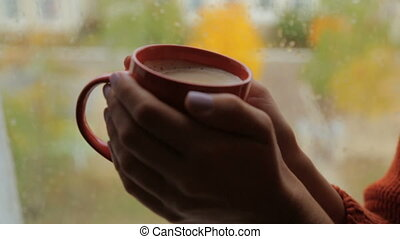 Mug cappuccino in female hands near the window - Red cup...