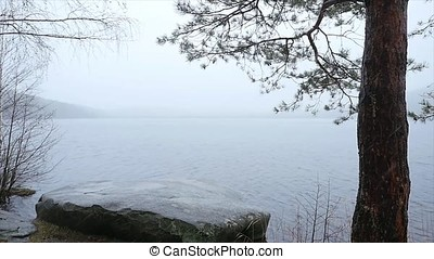 landscape of trees and snow. Late autumn snow on the lake of...