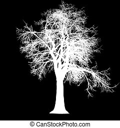 tree leafless side view silhouette isolated - white - vector...