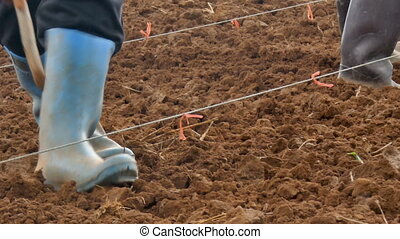 4K Close up shot farmer planting corn on dry country ground...