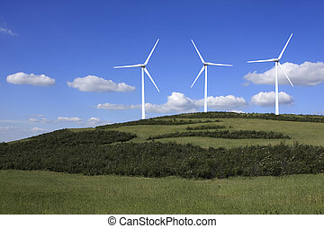 Eolic Turbines - Field with wind energy converters;...