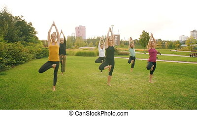 Group of people do yoga at nature - People do yoga at public...