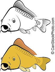 carp fish - line art and color
