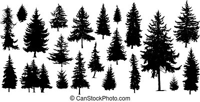 silhouettes of pine trees - Set of Twenty One different...