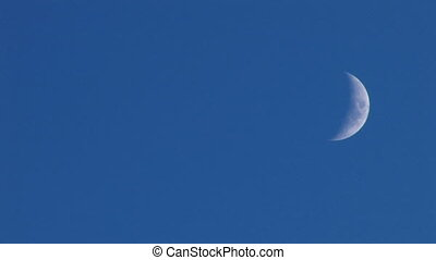 young moon on blue sky