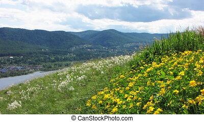 Nature - landscape 15 - Summer landscape with river.