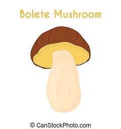 Edible mushrooms, bolete. Raw vegetarian food. Cartoon flat...