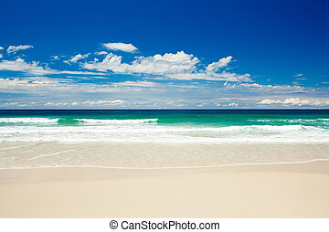 Tropical beach on sandy Gold Coast beach in Australia