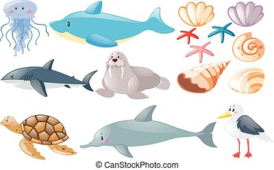 Different types of sea animals illustration
