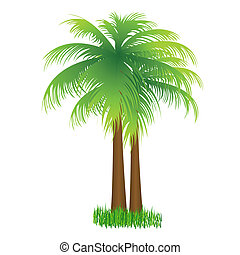 coconut tree - illustration of coconut tree on isolated...