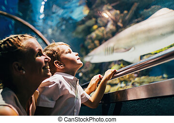 Mother and son watching sea life in oceanarium - Fascinated...