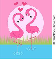 flamigo couple - a flamingo couple in love