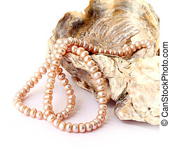 Pink pearl string on a sea shell