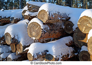Pine Logs in Winter - A stack of pine logs with snow and ice...