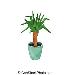 Yucca houseplant in blue pot vector illustration isolated on...