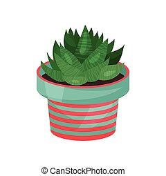 Aloe houseplant, potted plant vector illustration isolated...