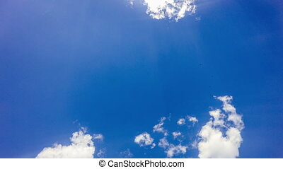 Airplane fly by sunny day blue sky. loop video - Airplane...