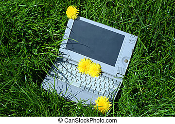 laptop outdoors