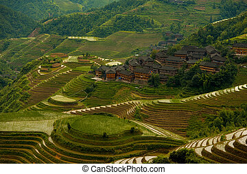 Cascading Flooded Rice Terraces Village Longji