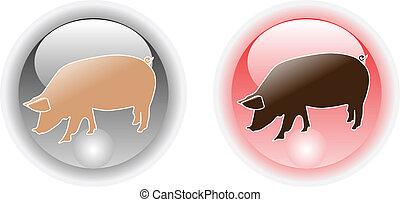 pig web icon button color vector illustration