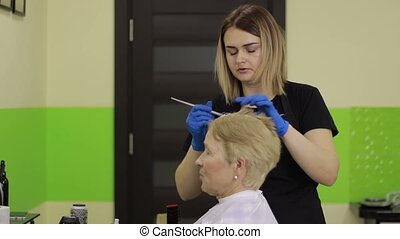 Hairdresser applying color to female customer - Cheerful...