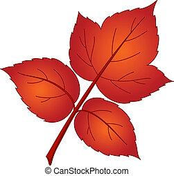 Leaf of raspberry, vector, beautiful nature object, isolated
