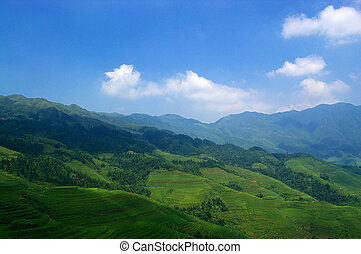 China rural landscape - Scenic view of agricultural fields...