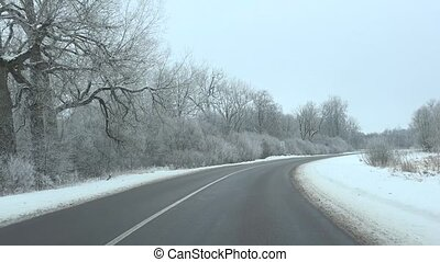 driving on paved road in winter season between frozen trees...