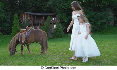 mother with daughter and pony horse - mother with her...