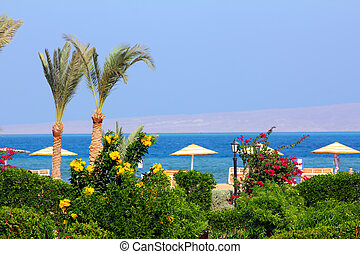 flowers and palm on tropical beach