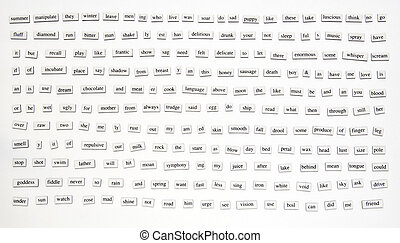 200+ Magnetic Words - Over 200 different words and...