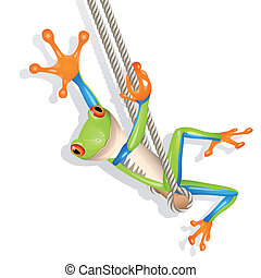 Tree frog on a swing - Little tree frog on a swing