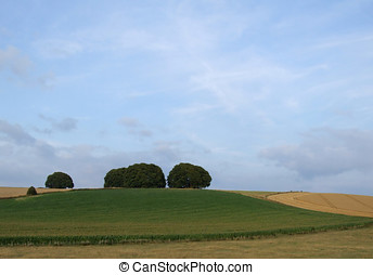 Farmland Countryside - Farmland view of fields and trees in...
