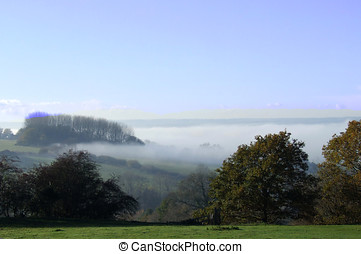 Foggy View - Rural scene with fog