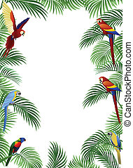 Parrot bird - Parrot and palm tree