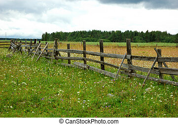 Old wooden fence in the field - View of pole fence in...