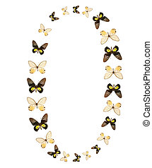 Zero number butterfly show isolated