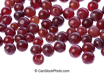 Zante Currants Isolated - Isolated macro image of Champagne...