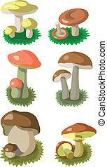 cogumelos, jogo, 002