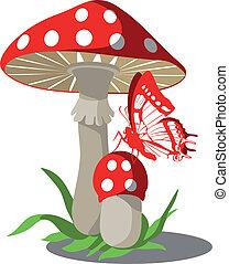 cogumelos, jogo, 004
